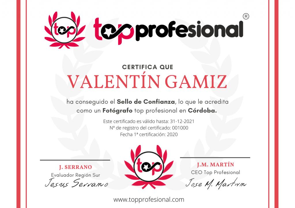 Certificado Top Profesional